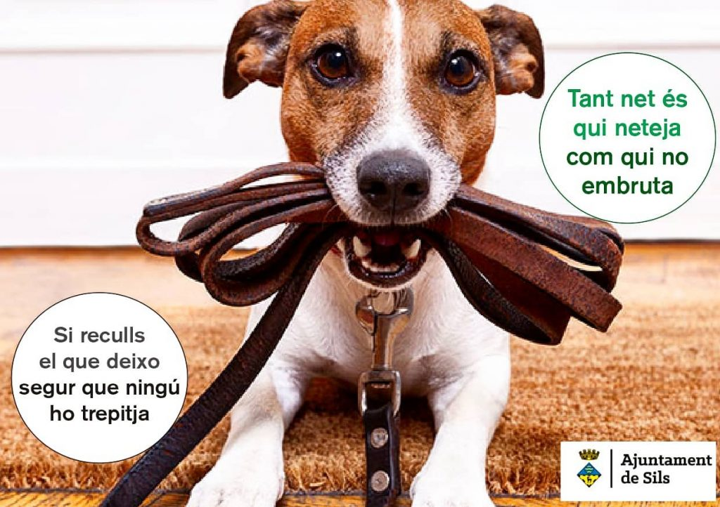 pas info a denúncies animals
